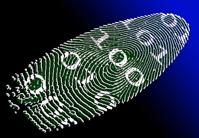 Fingerprint, identity, virtual identity