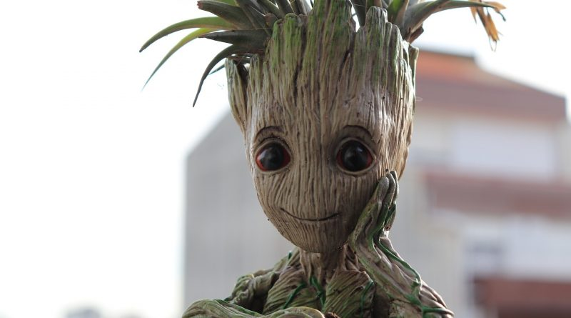 groot picture from pixabay.com