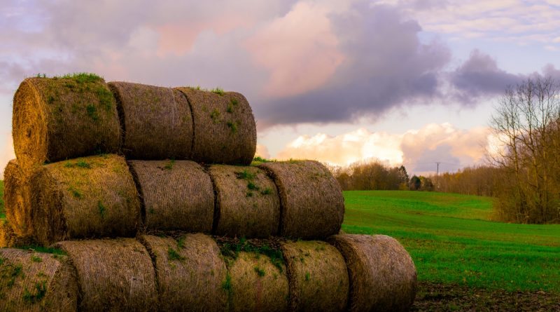stack of haybales photo from pexels.com